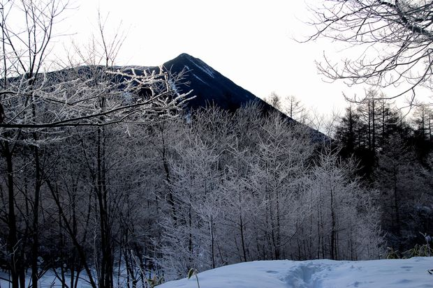 30,1,8光徳沼の霧氷2-4b.jpg