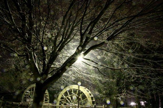 30,2,22雪降る夜に1-1b.jpg
