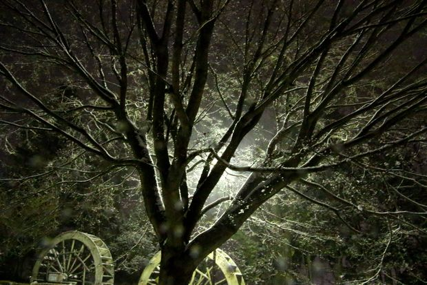 30,2,22雪降る夜に1-2b.jpg