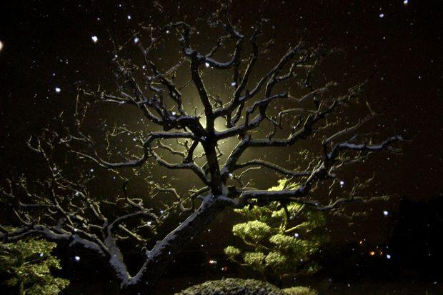 30,2,22雪降る夜に2-7b.jpg