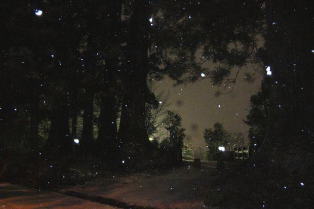 30,2,22雪降る夜に3-1b.jpg