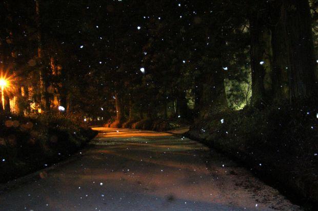 30,2,22雪降る夜に3-4b.jpg