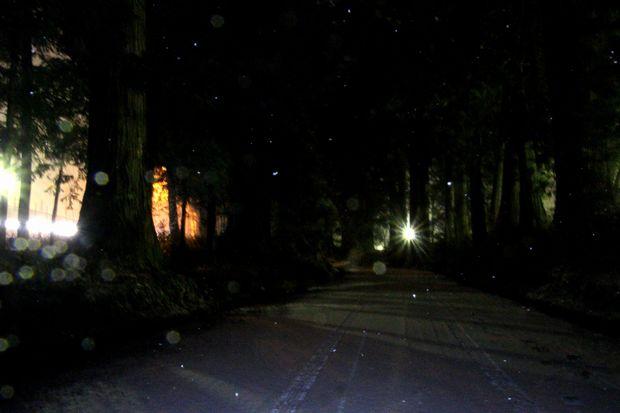 30,2,22雪降る夜に3-5b.jpg