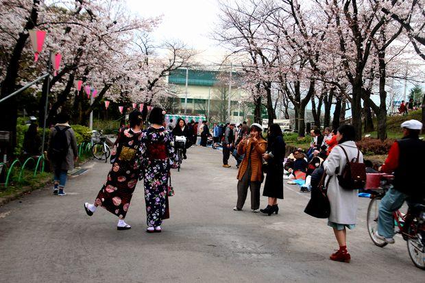 30,3,24隅田公園の桜2-9b.jpg