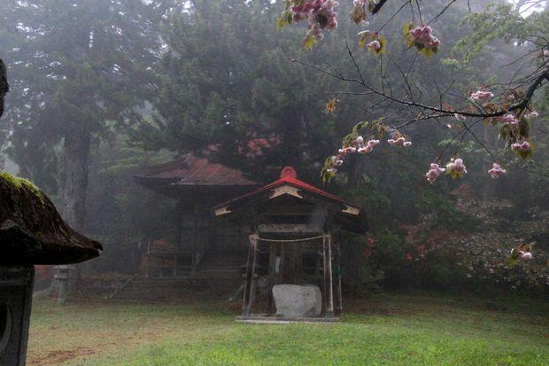 30,4,24霧の古刹4-6b.jpg