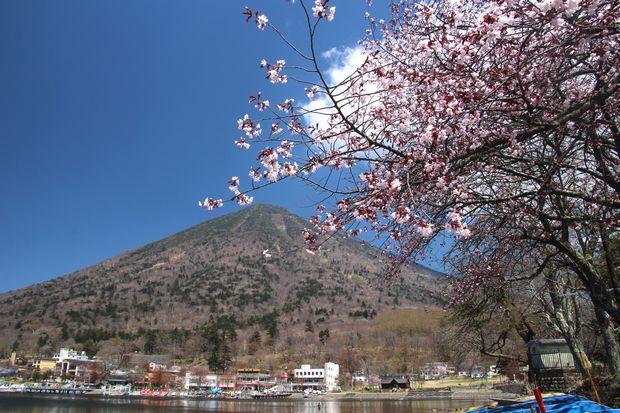 30,4,28 連山と桜1-1b.jpg