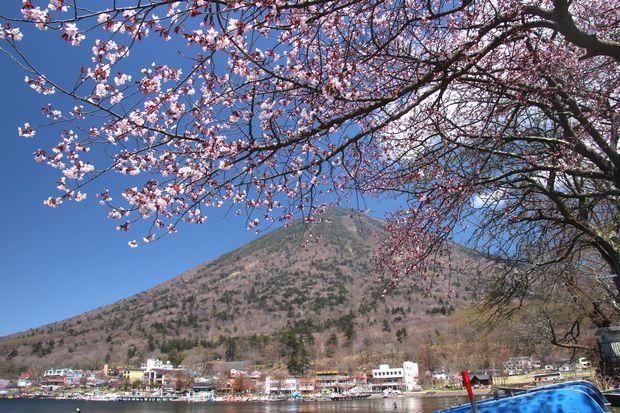 30,4,28 連山と桜1-3b.jpg