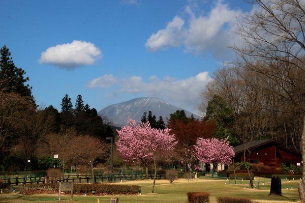30,4,8 連山と桜4-2b.jpg
