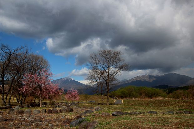 30,4,8 連山と桜4-7b.jpg