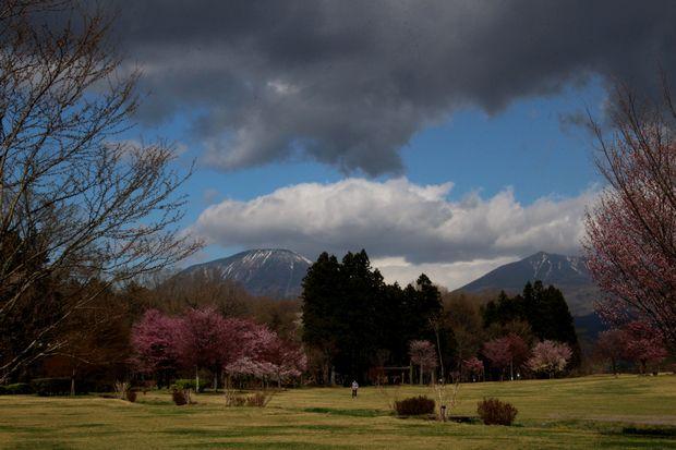 30,4,8 連山と桜5-7b.jpg