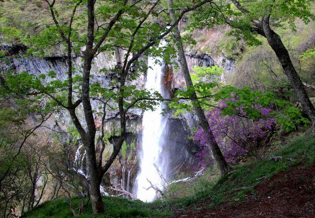 30,5,12華厳の滝とツツジ2-1b.jpg