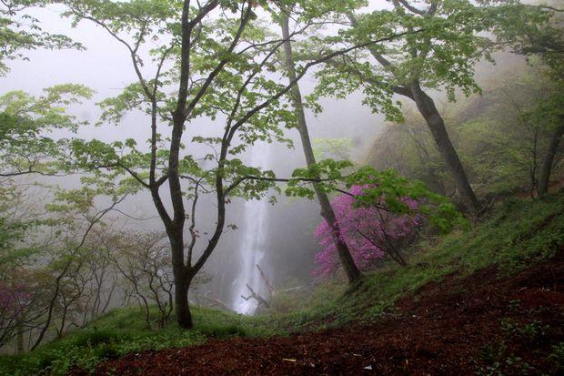 30,5,13 華厳の滝とツツジ3-3b.jpg