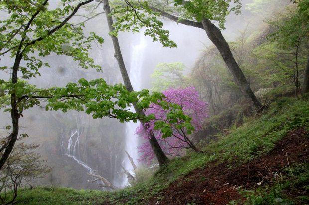 30,5,13 華厳の滝とツツジ4-1b.jpg