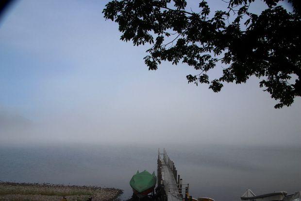 28,7,23 霧のバッティング2-8b.jpg