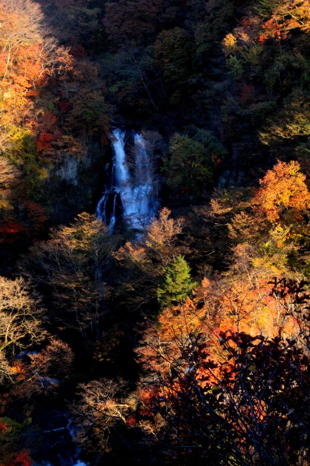 29,11,3霧降の滝の紅葉2-8b.jpg