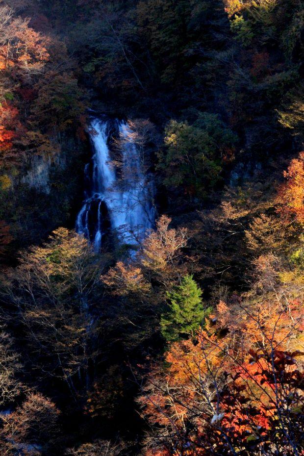 29,11,3霧降の滝の紅葉3-4b.jpg