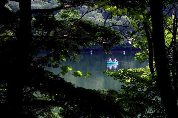 29,8,5 湯の湖の鏡像3-4b.jpg