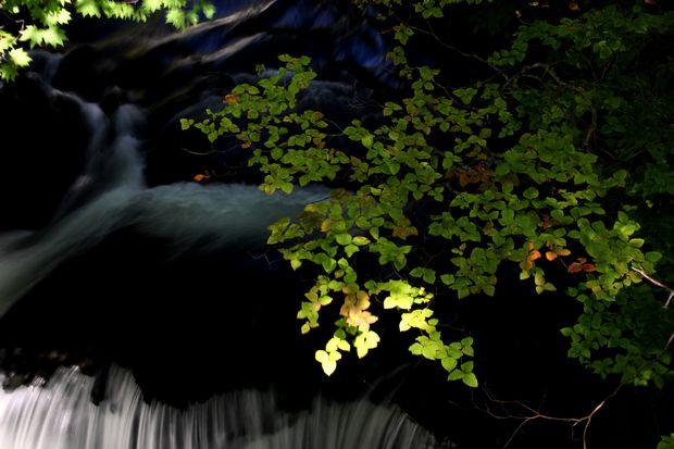 29,9,24竜頭の滝と紅葉1-6b.jpg