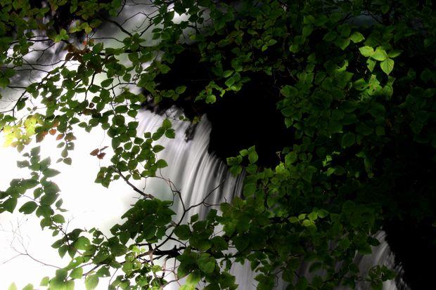 29,9,24竜頭の滝と紅葉1-8b.jpg