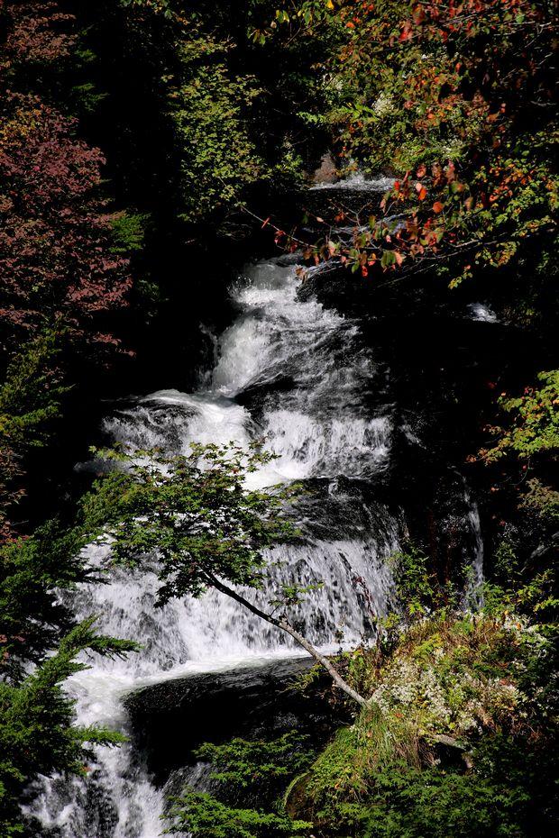 29,9,24竜頭の滝と紅葉2-5b.jpg