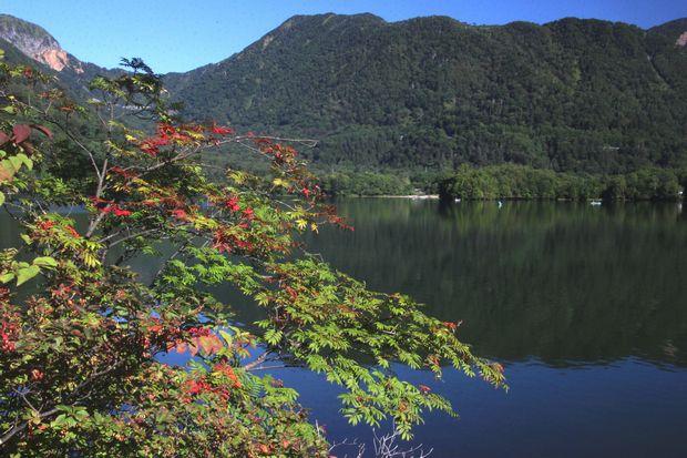 29,9,9湯の湖の紅葉1-1b.jpg