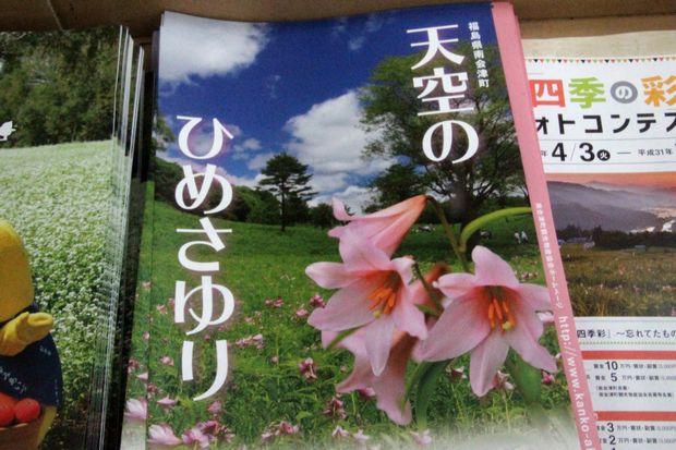 30.6.23 ヒメサユリ8-6b.jpg