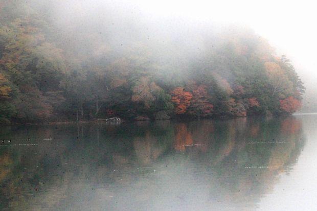 30,10,08 小田代湖 '18 5-4b.jpg