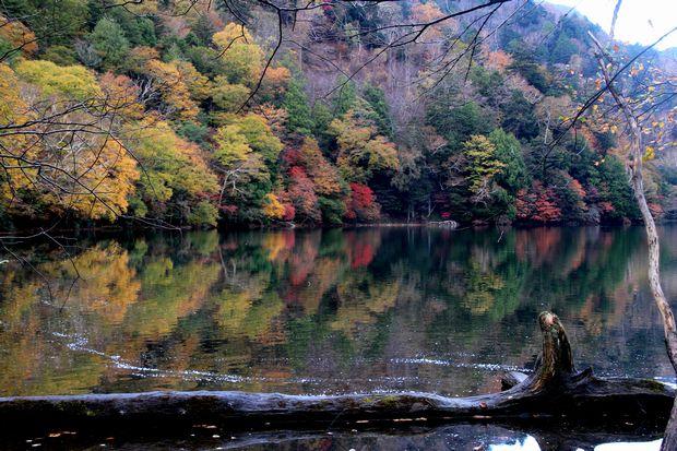 30,10,14湯の湖のオブジェと紅葉1-2b.jpg