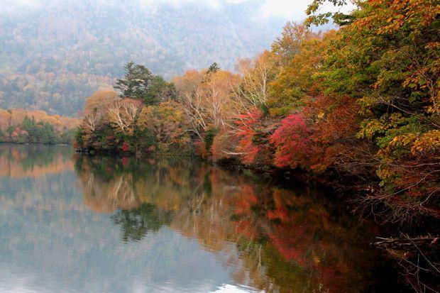 30,10,14湯の湖の紅葉1-3b.jpg