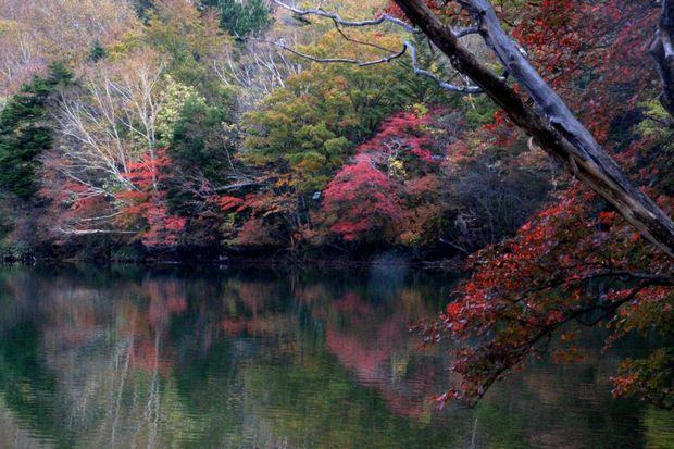 30,10,14湯の湖の紅葉3-9b.jpg
