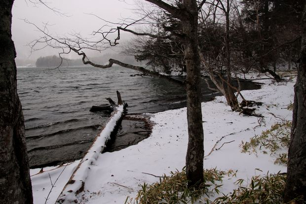 30,12,9 吹雪く湯の湖1-5b.jpg