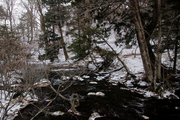 30,12,9 吹雪く湯の湖1-7b.jpg