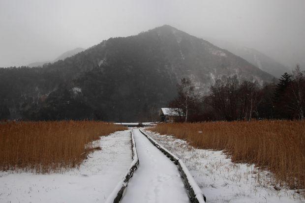 30,12,9 雪のススキ野2-4b.jpg