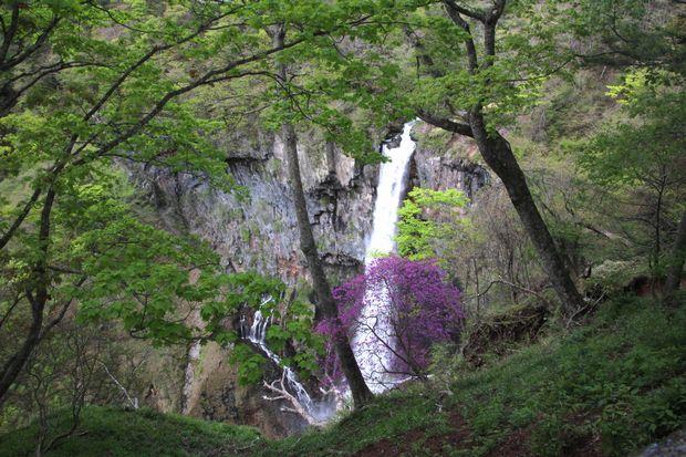 30,5,12華厳の滝とツツジ1-1b.jpg