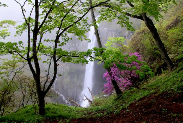 30,5,13 華厳の滝とツツジ3-4b.jpg
